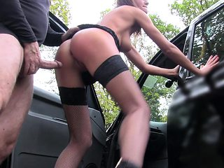 Fake Taxi Posh ladies swollen pussy and tight ass