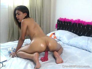 Yummy Nice Ass Camgirl Fucks Dildos