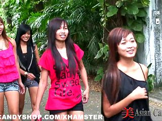Asian Candy Shop Girls