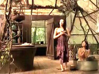 The Chinese Botanists Daughters (2006) - Xiaoran Li