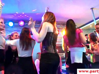 Real european babes cocksucking at sexparty