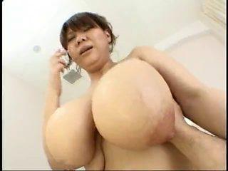 Japanese large milk cans - Hana Uehara